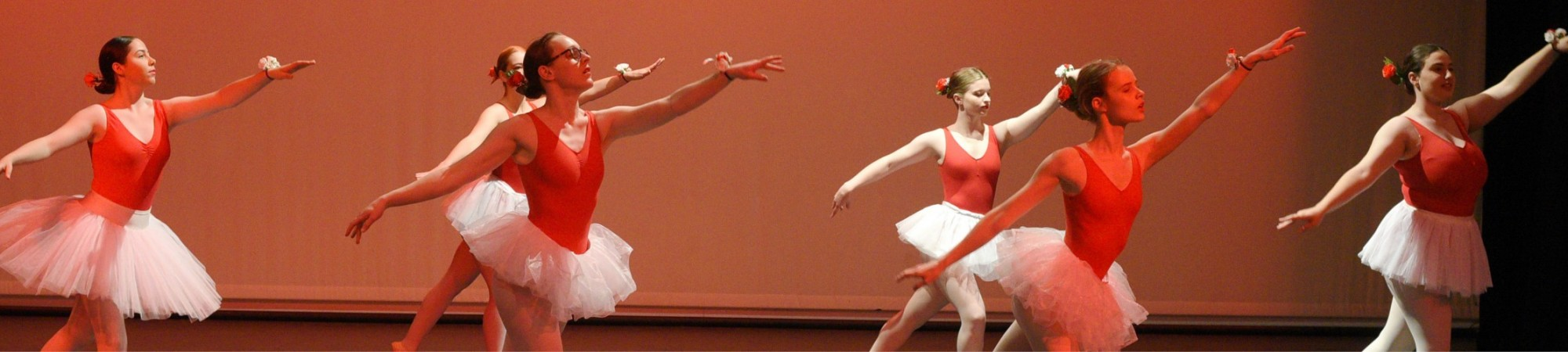Website Banner Seymour Dance SnrBallet