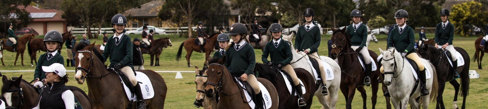 Equestrian IMG 5479 Banner